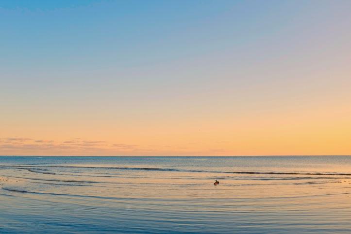 Beach_Vibe_022120